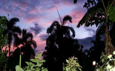 Сельва Эквадор Гуалакиса