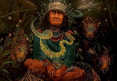 ayahuasca-maestra