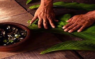 ayahuasca-proсeso