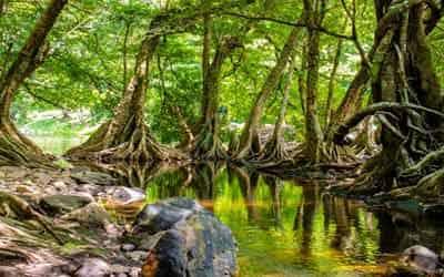rio-en-equador