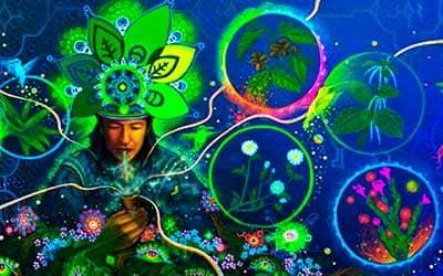Песни шаманов